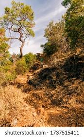 Steep footpath with man hiking downhill - Lycian Way in Cirali, Antalya Province, Turkey, Asia