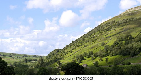 Steep hillside with tree cover and green fields in the Yorkshire Dales