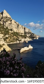 """Steep Limestone Cliffs with Wild Flowers in the Foreground on the Mediterranean Coast in the Bay of """"Calanque de Sugiton"""" at Calanques National Park near Marseille and Cassis, Provence, South France"""