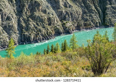 Steep rocky Bank of the Katun river, Argut cluster, Altai Republic