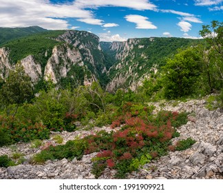 Steep rocky cliffs of Lazar's Canyon (Lazarev kanjon), the deepest and longest canyon in eastern Serbia, near the city of Bor - Shutterstock ID 1991909921