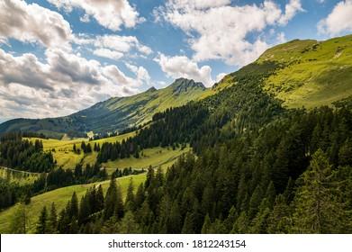 Steep slopes in summer, huge limestone walls, panoramic peaks andmountains withvalleys around. Dwarf mountain pine inchallenging terrain in Karavanke mountains, Slovenia and Karawanken, Carinthia