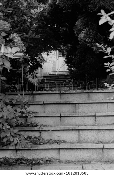 steep steps looking up, black and white photography