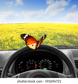 Steering Wheel with Butterfly and Dashboard of the Car with view through the windshield of Beautiful Landscape of Blooming Yellow Meadow Flowers