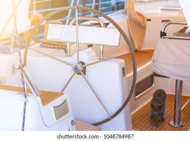 steering wheel on boat with empty seats