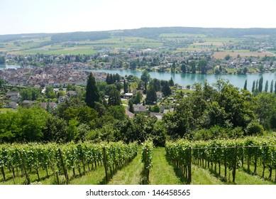 Stein am Rhein Switzerland Rhine Panorama view wine and Hegau