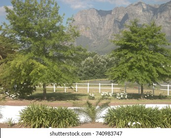 Stellenbosch Winelands in South Africa
