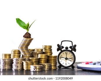 step of coins with plant growing on white background,saving and investment planning concept