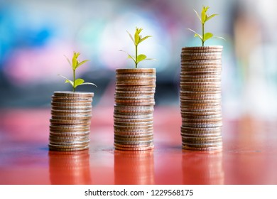 step of coins stacks with tree growing on top, money, saving and investment or family planning concept, motion blured background.