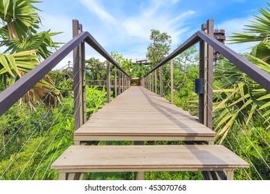 Step of Walkway over Tree top
