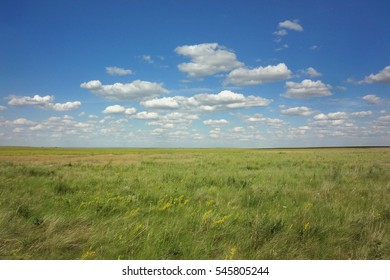 Steppe is an ecoregion, in the montane grasslands and shrublands and temperate grasslands, characterized by grassland plains without trees apart from those near rivers and lakes.