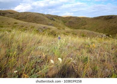 Steppe in Kazakhstan