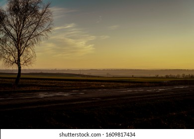 Steppe landscape in field. Sunset in the steppe.