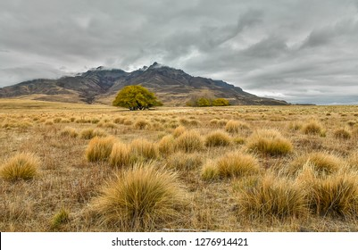 Steppe in patagonia, Argentina