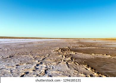 Steppe saline soils. Steppe prairie veldt veld. Saline soils of the desert. Salt lakes