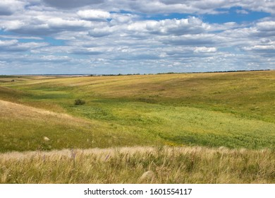 Steppe valley landscape in summer in the Middle Volga region, Russia