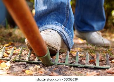 stepping on rakes
