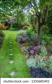 Stepping stones in garden lawn pathway leading to garden swing bordered by trees, shrubs and  flower beds with Allium  globe flowers