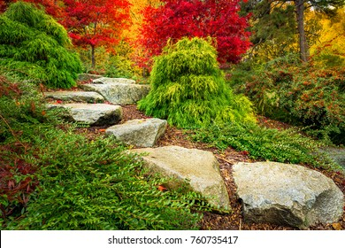 Stepping stones lead towards red japanese maple trees in Kubota Garden, Seattle Washington State.