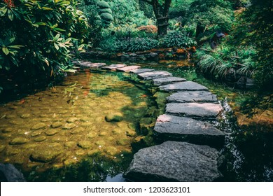 stepping stones over still water
