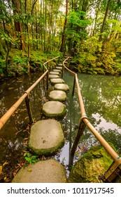Stepping stones in Tenjuan garden at Nanzen-ji, a Zen Buddhist Temple in Higashiyama District, Kyoto, Japan. Vertical shot.