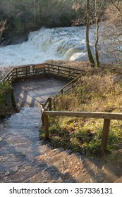 Steps to Aysgarth Water Falls in Wensleydale in the Yorkshire Dales