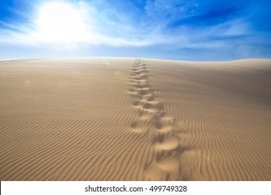 Steps of human foot mark on windy white sand dunes, Muine desert, Phan Thiet, Vietnam