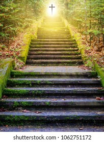 Steps leading up to the sun.  Way to God .  bright light from heaven .  Religious background  . Sunlight in the green forest .  Door to heaven . Christian Cross . Light from sky .  cross beautiful .
