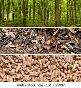 Steps of production wood pellets