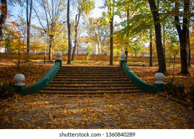Steps with a lot of the yellow autumn leaves in the park.