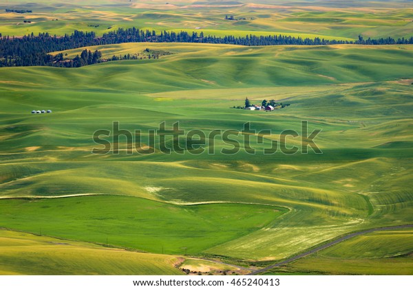 Steptoe Butte State Park of the surrounding farmland and small towns