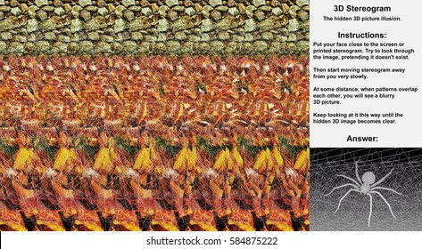 Stereogram illusion with spider on  web in hidden 3D picture