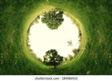 Stereographic panoramic projection of a green field with trees in the summer. 360 degree panorama.