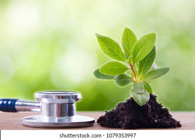 stethoscope and little plant with soil. energy and health concept