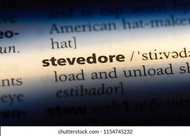 stevedore word in a dictionary. stevedore concept.