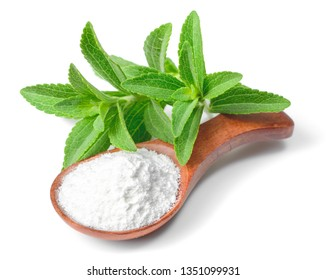 stevia sugar powder in the wooden spoon, with fresh stevia leaves, isolated on white background