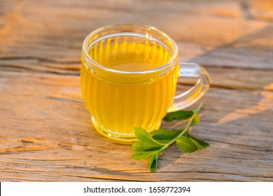 Stevia tea in a glass with stevia leaves in the morning sunshine