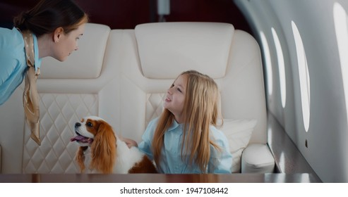 Stewardess taking order from little girl with dog in first class cabin. Preteen kid with cocker spaniel flying alone in private jet with professional crew