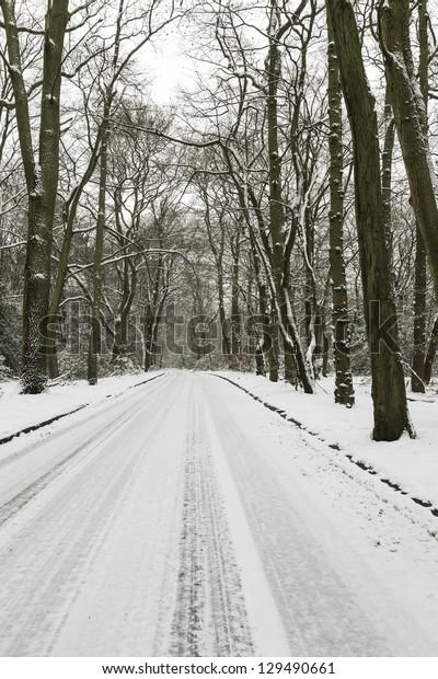 Stewarts Drive, Burnham Beeches in Snow