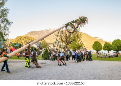 St.Gilgen, Austria - April 30, 2018: Traditional decorated maypole is being erected during folk festival in austrian  alpine village.
