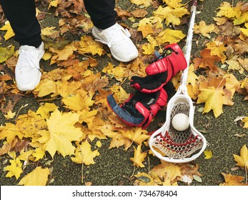 Stick, ball, gloves for lacrosse