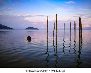 Sticks are in the sea