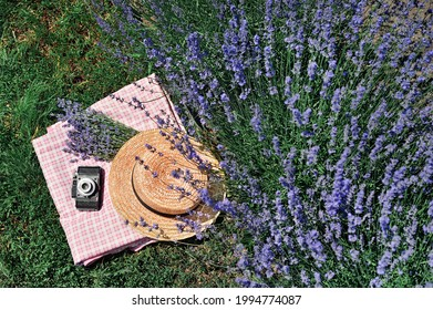 Stil llife with a straw hat and a photo camera under the lavender bush - Shutterstock ID 1994774087