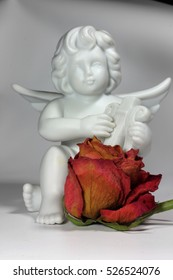 Still life angel with rose