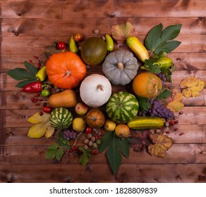 Still life of the autumn harvest of pumpkins, watermelons, melons, pears, apples, walnuts, hazelnuts, grapes, peppers, cucumbers, and rose hips on a wooden background