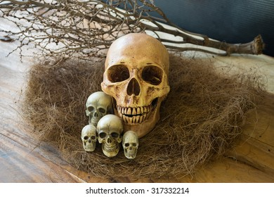 Still life, Awesome pile of skull put on old straw