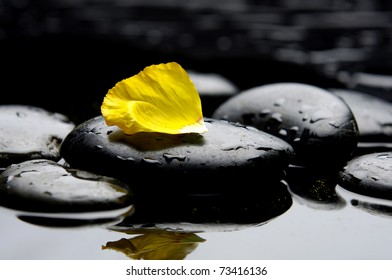 Still life with Beautiful yellow poppy and stones with reflection
