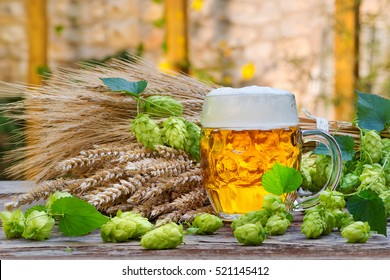 still life with beer glass and hop cones