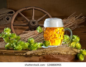 Still life with beer,hops and barley in the old barn