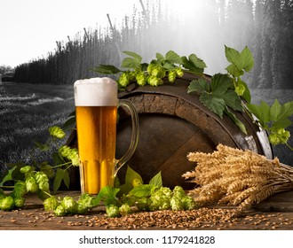 Still life with beer,hops and wheat